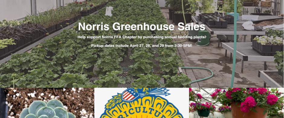 Norris FFA Selling Homegrown Plants!