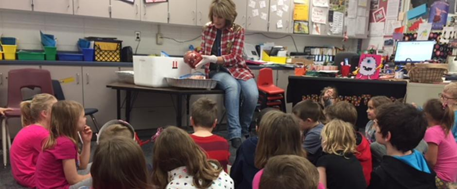 Second Graders Learn About Cow Hearts