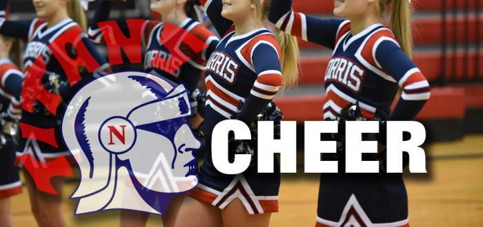 Cheer Mini-Clinic