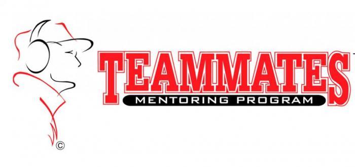 Norris TeamMates needs Mentors
